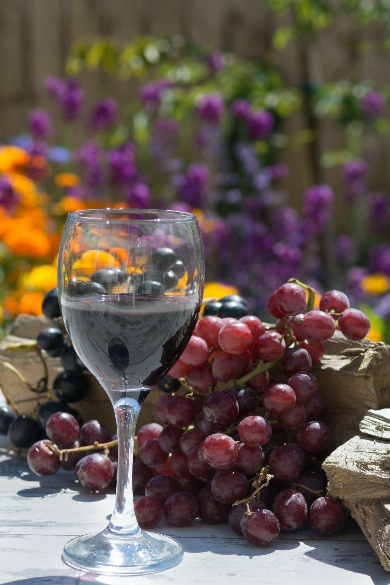 wine china health